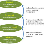 Kapcsolat a kultúra országos, szervezeti és egyéni szintjei között